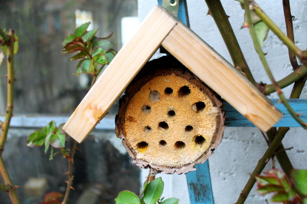 selbst gebautes Insektelnhotel